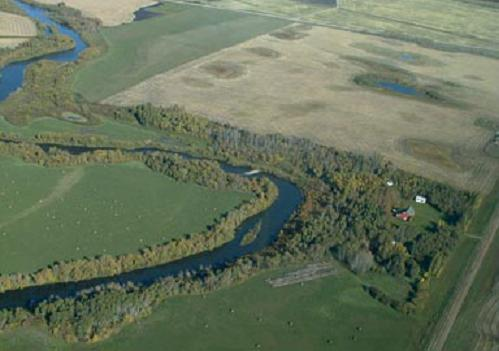 area along river or stream protected from livestock and erosion