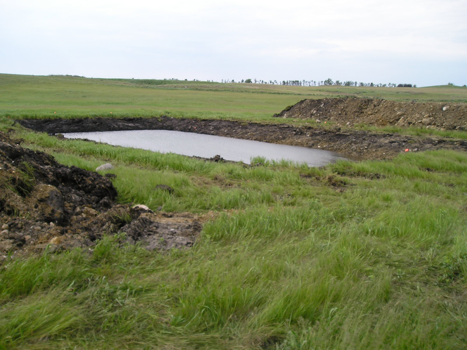pond to hold water for livestock and wildlife